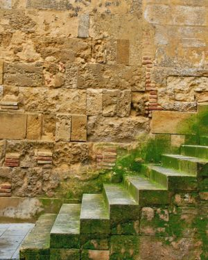 Mossy Stairs, Spain